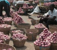 GHANA'S ONION IMPORTS HIT GHc 520M