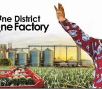 36 FACTORIES TO BE OPERATIONALIZED SOON UNDER 1D1F-NANA ADDO