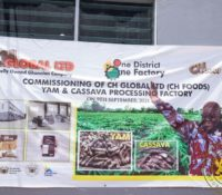 1D1F: NANA ADDO COMMISSIONS GHC10M CASSAVA & YAM FACTORY IN KRACHI EAST DISTRICT